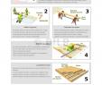 Action tonnelle Unique Guide De Conception D Une Plateforme En Bois En Téléchargement