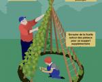 30 Inspirant Article De Jardin