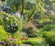 Banc De Jardin Luxe 25 Beautiful Small Cottage Garden Ideas for Backyard