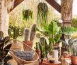 Bar Exterieur Jardin Best Of 20 Idées Déco Pour Faire Entrer L été Chez soi