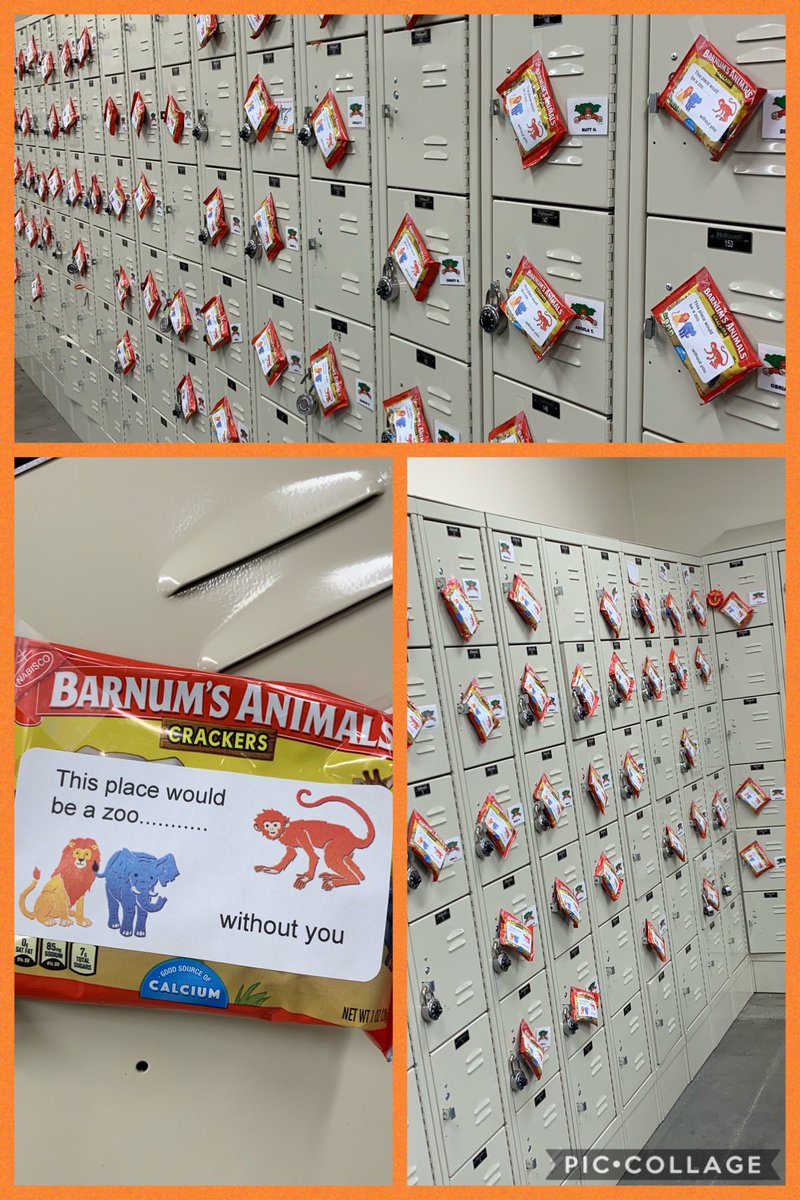 Barnum Brico Depot Best Of Griffin Home Depot Depotgriffin Of 34 Beau Barnum Brico Depot