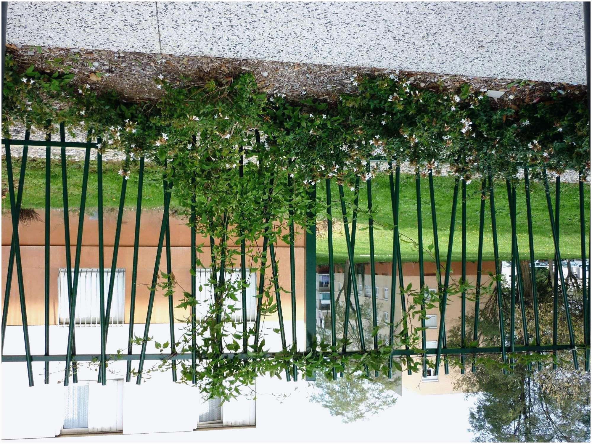 cabane jardin castorama luxe impressionnant luxe castorama chaise de jardin jardin and piscine pour of cabane jardin castorama