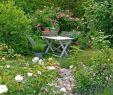 Coin Detente Jardin Génial Un Coin Romantique Dans Votre Jardin
