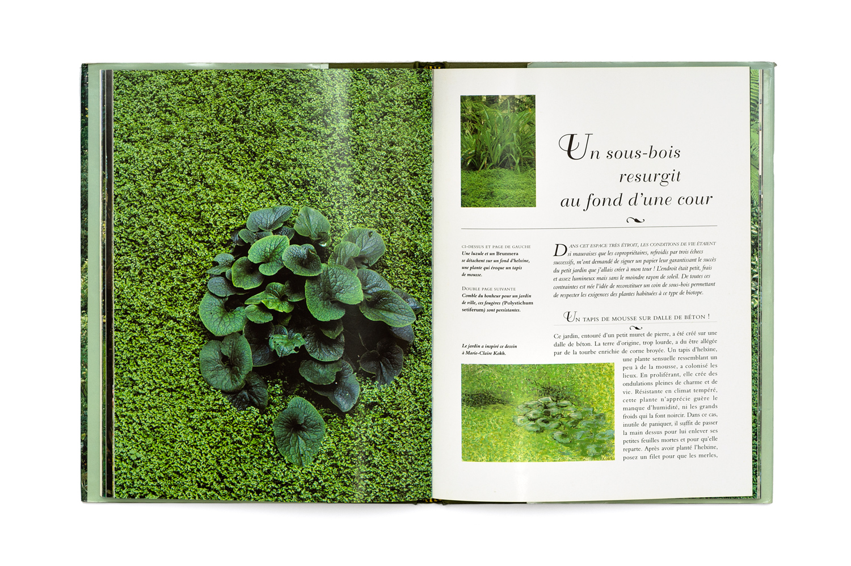 Ensemble De Jardin Luxe Index Of Wp Content