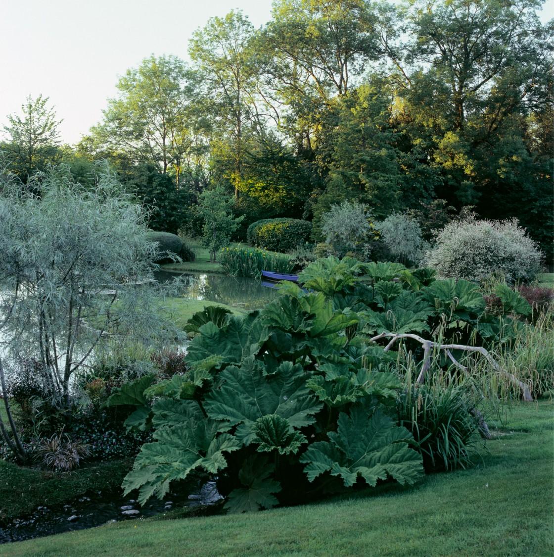 jardin 0 3 1120x1125