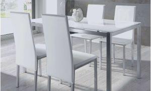 22 Nouveau Fauteuil Table à Manger