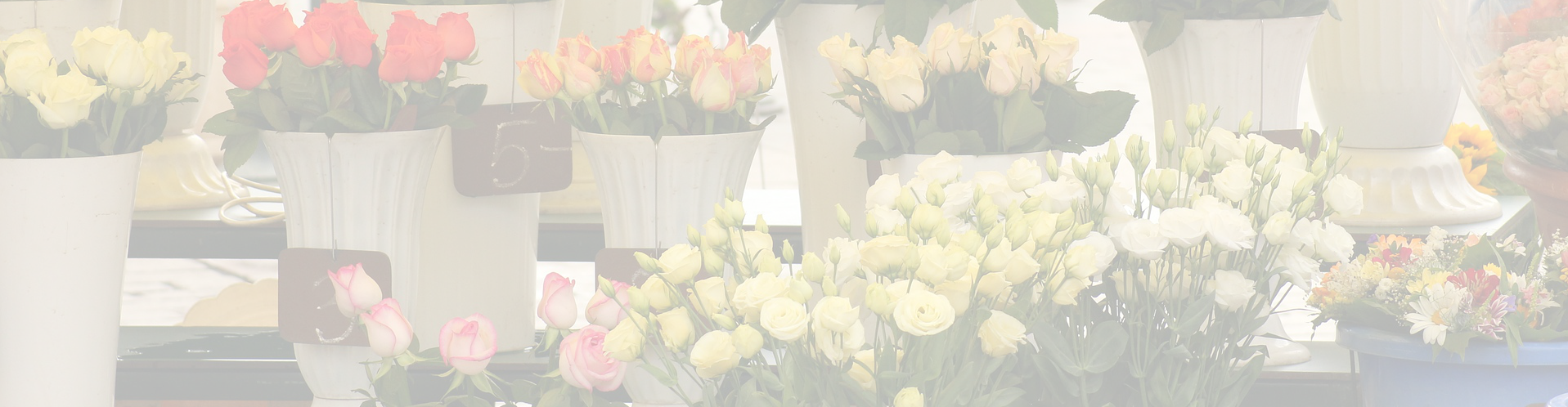 flowers Banner background