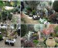 Jardinier Pas Cher Frais Cabane A Outils source D Inspiration Un Abri De Jardin