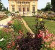 Petit Salon Jardin Élégant An afternoon at the Gardens Of Versailles