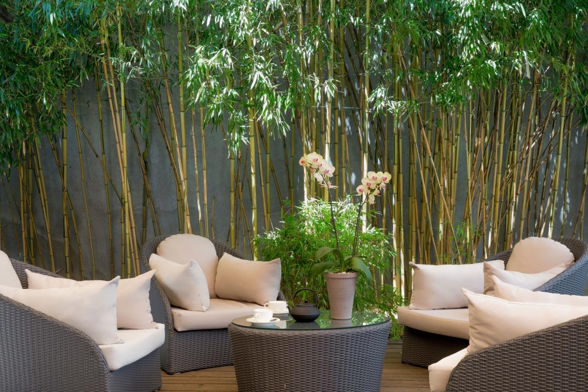 Promotion Table De Jardin Unique 3 Star Hotel In Geneva Hotel Jade