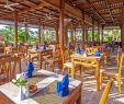 Salon De Jardi Inspirant ⇒ ОтеРь Hawaii Le Jardin Aqua Park 5 Гаваи Ре Жардин Аква