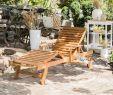 Salon De Jardin En Acacia Élégant Transat De Jardin En Bois Java