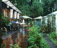 Salon De Jardin Garden Inspirant Где попробовать устрицы в Одессе ТОП 7 заведений Vgorode