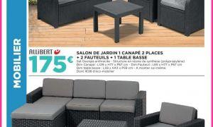 23 Génial Salon De Jardin Geant Casino