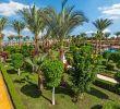 Salon De Jardin Promo Frais ⇒ ОтеРь Hawaii Le Jardin Aqua Park 5 Гаваи Ре Жардин Аква