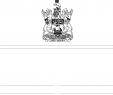 Salon De Jardin Vert Anis Luxe the Royal Gazette Royale 15 01 21 Rg