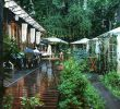 Table Bar Jardin Beau Где попробовать устрицы в Одессе ТОП 7 заведений Vgorode