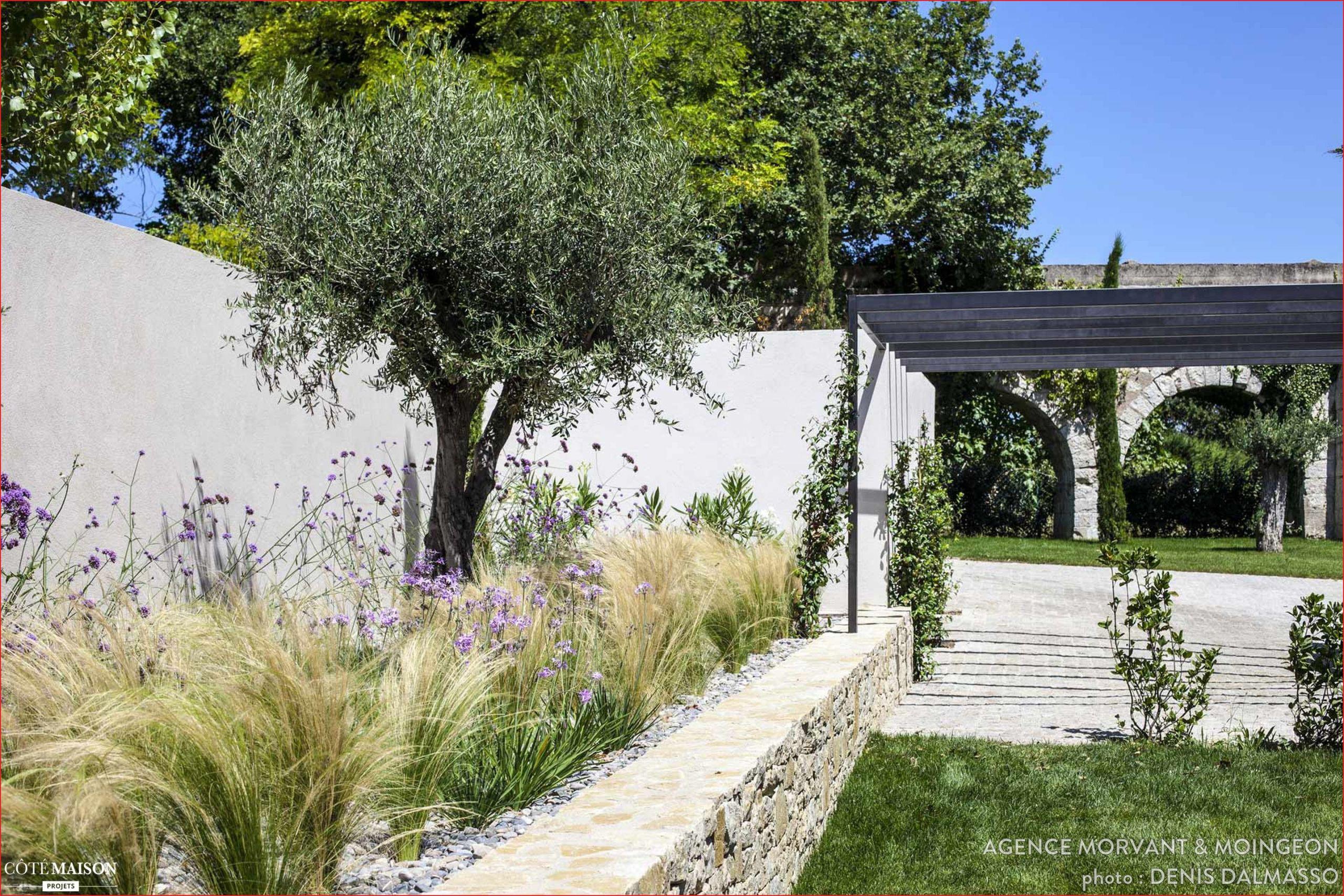 tamis jardin jardin m diterran en contemporain agence morvant moingeon c t of tamis jardin