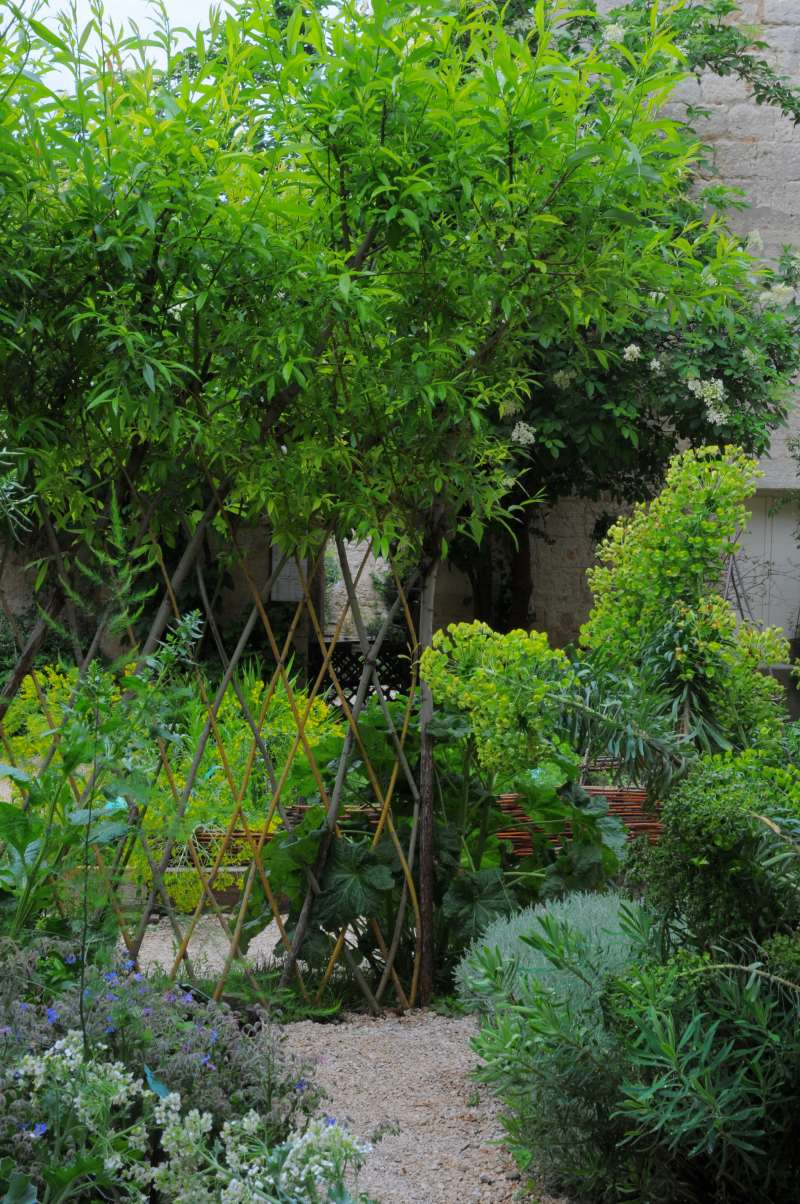 Jardin médiéval d U zès photo Béatrice Pichon JPG