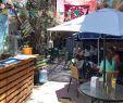 Table De Jardin Haute Best Of Lola In Chile