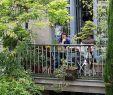 Terrasse De Jardin Génial épinglé Par Genevi¨ve Schaul Sur Terrasses En 2019