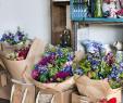 Vive Le Jardin Salon De Provence Best Of Pin by Moe Chambry On Business Revamp