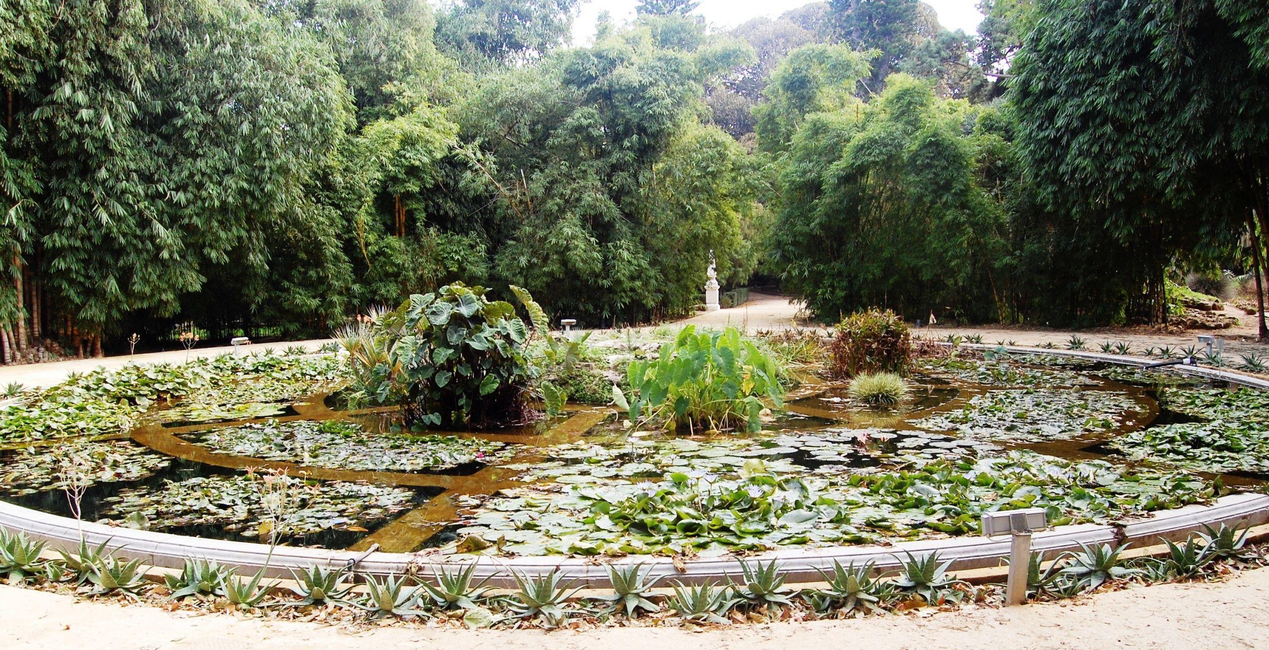 Aquarium01 Orto botanico Palermo