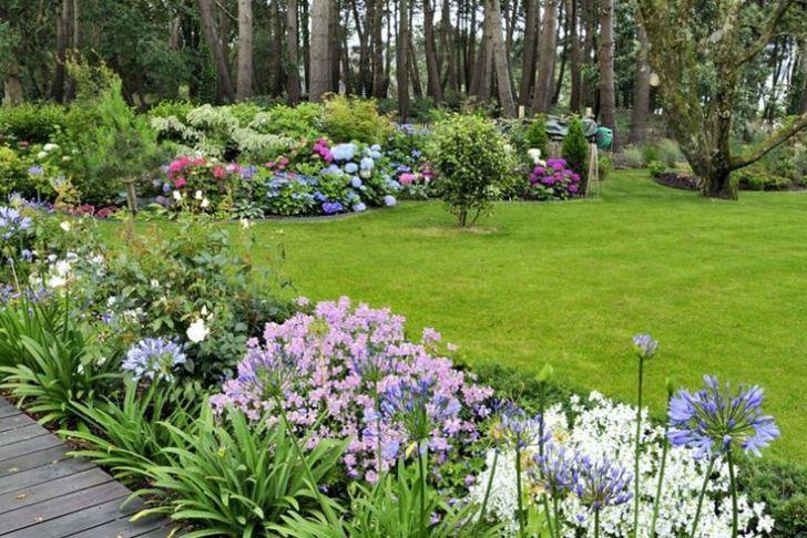 Agapanthe Jardin Best Of Un Jardin Breton D Agapanthes Et D Hortensias Bleus