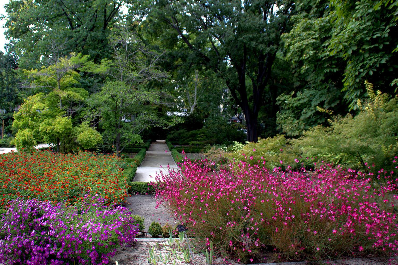 filejardin botanico de madrid el 28 de septiembre big