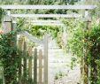 Amenagement Petit Jardin Frais Sustainable Summits 2018