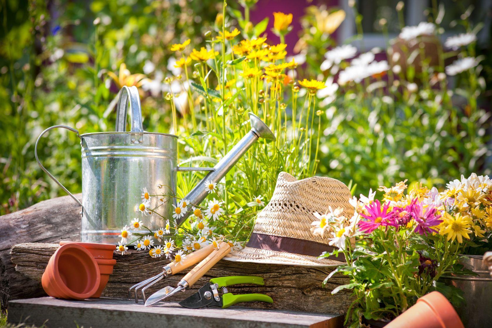 ne pas oublier de cultiver son jardin prendre des soins arroser désherber tailler les plantes pour aménager son jardin