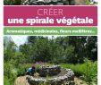 Aménager son Jardin Unique Créer Une Spirale Végétale Amazon Erckenbrecht Irmela