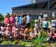 Amenager Un Jardin Luxe Un Jardin Potager Apprécié Par Les écoliers De Bastogne