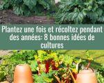 71 Beau astuce Jardin