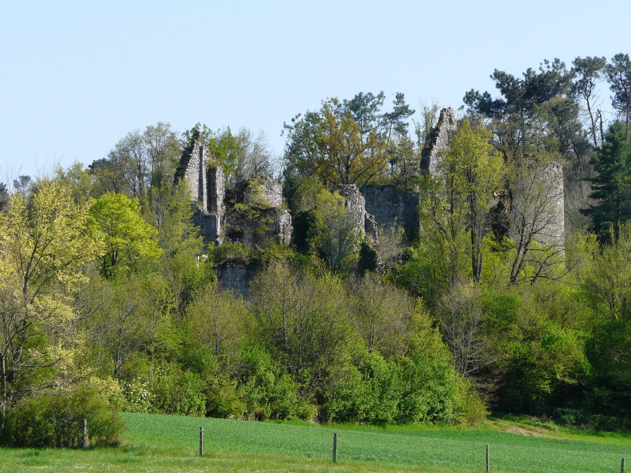 Saint Front la Rivière ruines la Renau 56 JPG