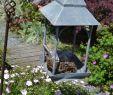 Au Jardin Fleuri Inspirant Jardin Ouvert  Verlain Neufchateau