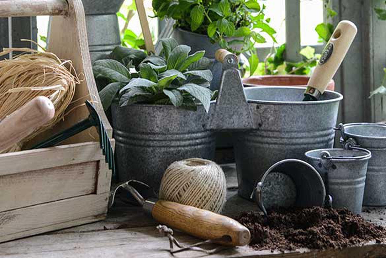 produits de jardin 1170x0 q85 subsampling 2 upscale