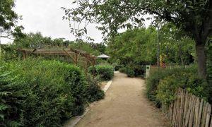 70 Luxe Blatte Jardin