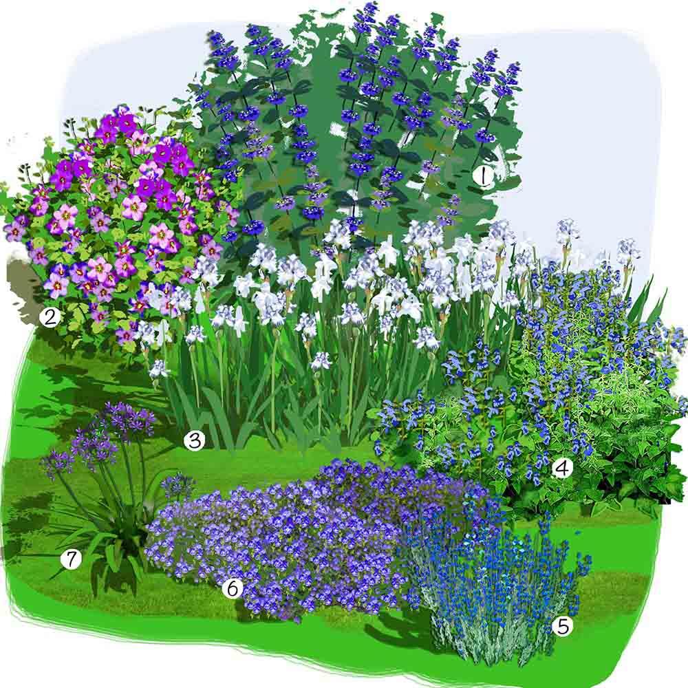 jardin bleu blanc pourpre idee amenagement 1000 553