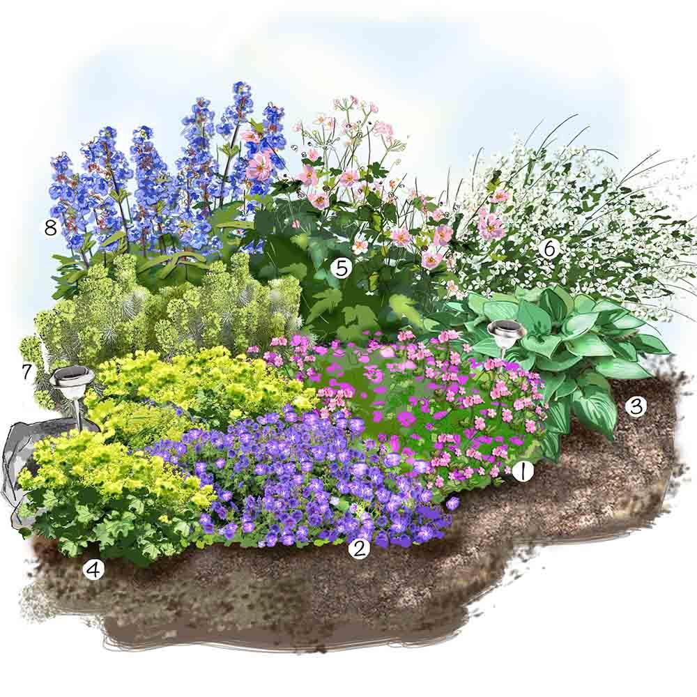 vivaces fleuris jardin idee amenagement 1000 553