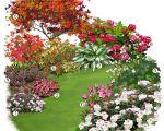52 Luxe Bordure Jardin Truffaut