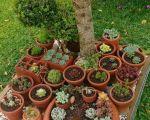 43 Nouveau Bricolage Jardin