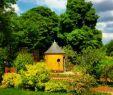 Collège Jardin Des Plantes Poitiers Charmant Jardin Des Plantes