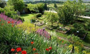 17 Luxe Collège Jardin Des Plantes Poitiers