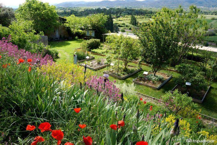 Collège Jardin Des Plantes Poitiers Nouveau Jardin Des Plantes Tinctoriales