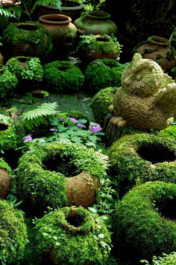 Creation Jardin Luxe Want to Make some Diy Mossy Pots with Us It S A Pretty Easy Of 45 Beau Creation Jardin