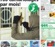 Créer Un Jardin Exotique sous Nos Climats Best Of L Entier Du Ghi Du 16 Décembre by Ghi & Lausanne Cités issuu
