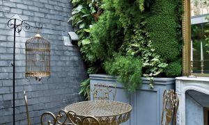 53 Inspirant Créer Un Mini Jardin De Plantes Grasses