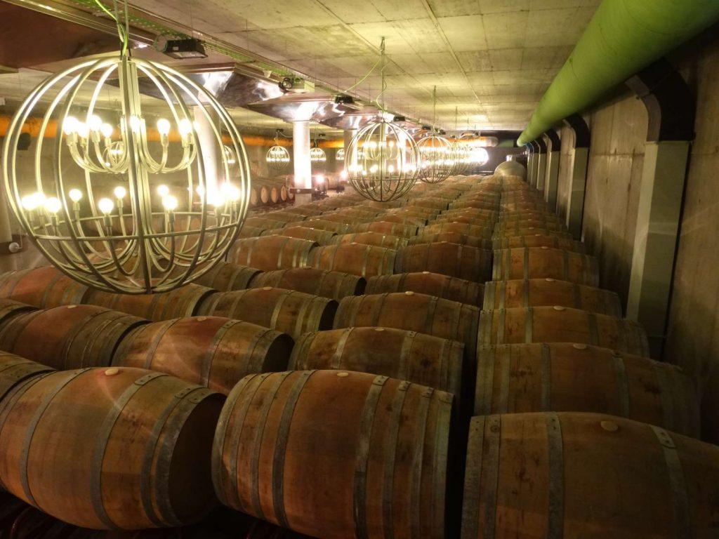 Creer Une Allée De Jardin Élégant Museo Del Vino Pagos Del Rey Winy Fog Of 24 Luxe Creer Une Allée De Jardin