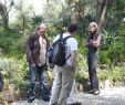 Entrée Jardin D Acclimatation Élégant Webambous New